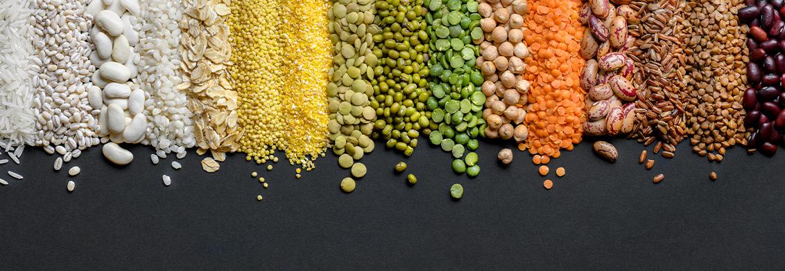 dieta proteinas grasas y carbohidratos