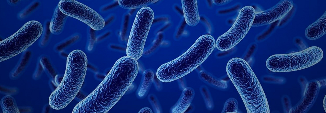¿Conoces la importancia del microbioma para la vida? ¡Celebremos su día!
